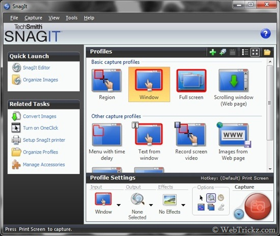 Download licensed copy of SnagIt 7.2.5 Free