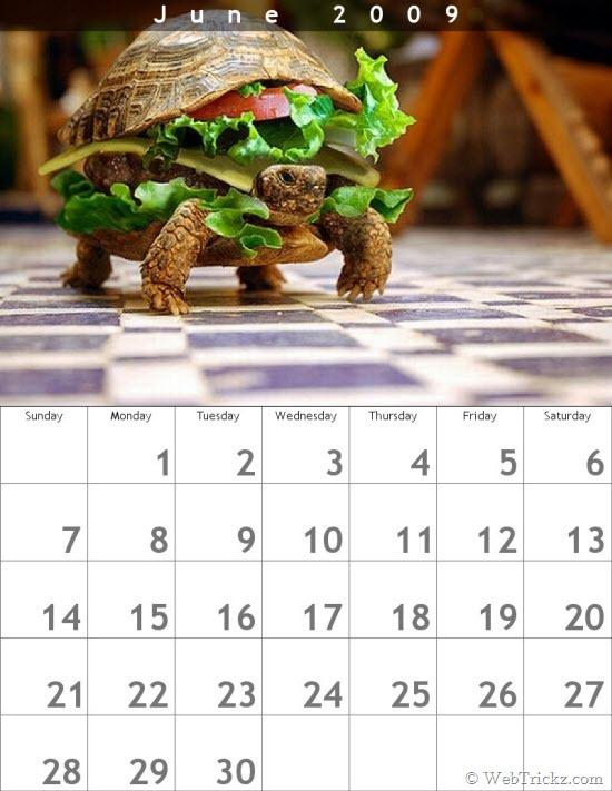 Create a calendar from your digital photographs