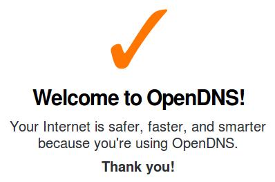 OpenDNS check