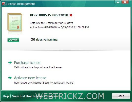Kaspersky Internet Security 2011 License