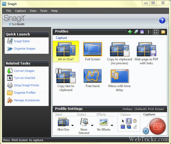 Snagit 10 - Screen capture