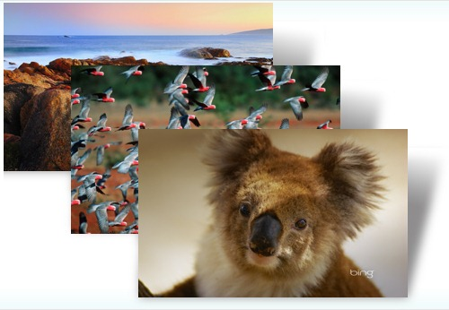 Best of Bing: Australia 2