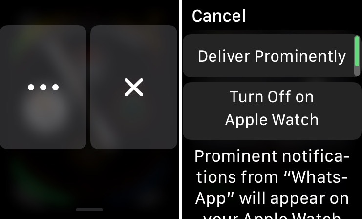 how to turn off deliver quietly on Apple Watch