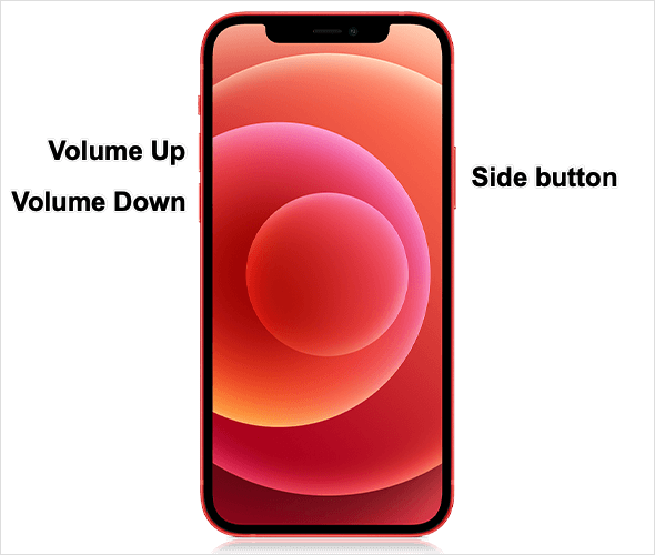 side button and volume buttons on iPhone 12
