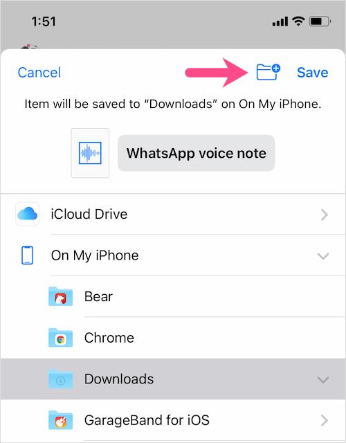 save Whatsapp audio file on iPhone