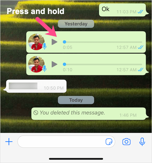voice notes in WhatsApp conversation on iPhone