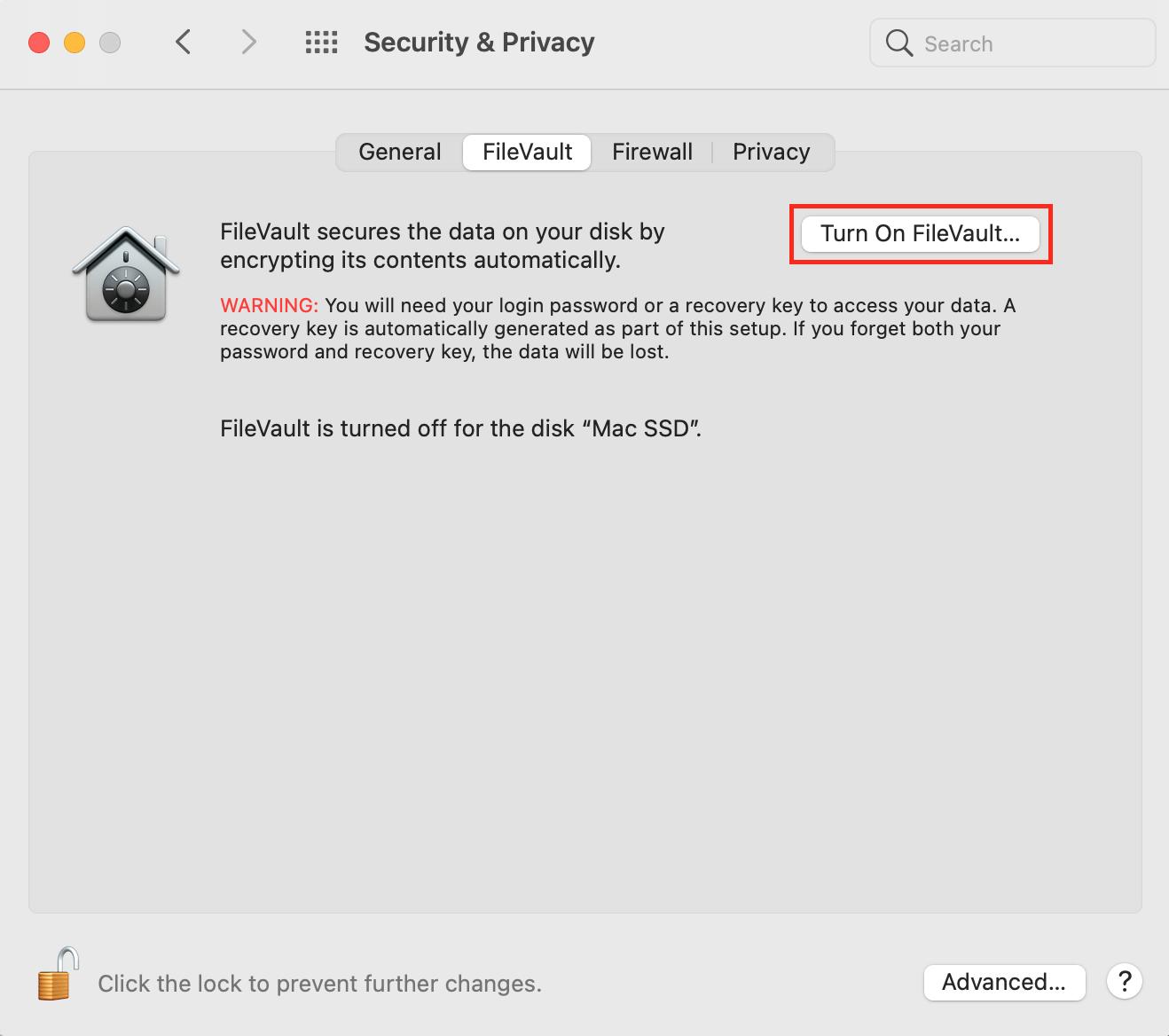 turn on FileVault on macOS